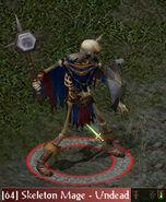 SkeletonMage