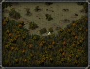 Мурбрук, дом волшебника 3