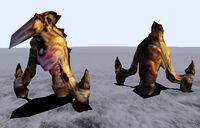 CR-image-Rhinok 01