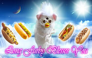 Long furby blesses you