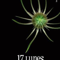 17 Lunes (Livre)