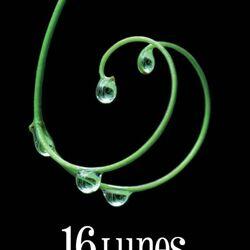 16 Lunes (Livre)