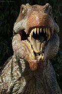 Dinosaurus---Dinosaur---Dinosaurio---Dinosaure---Spinosaurus005