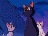 Sailor Moon Screenshot 0103
