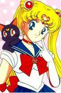 Sailor moon y luna