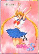 Usagi Tsukino the Bunny Girl