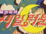 Sailor Moon in South Korea