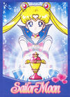 Sailor Moon Brazilian DVD Promo Card