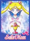 Sailor Moon Brazilian DVD Promo Card