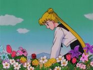 Sailor Moon Screenshot 0298