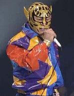 Sensational Jaguar Mask.jpg