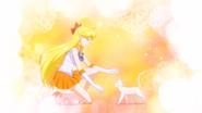 SailorVenusSECRY7