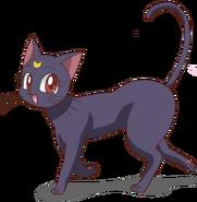 Luna kitty-cat