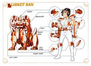 Schéma de l'Armure du Petit Lion