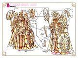 Athenaclothclassic