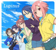 Lupinus Cover