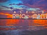 Além do Rinoceronte (telenovela)