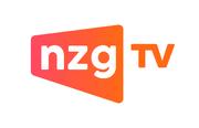 NZG TV.png
