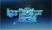 Igor Brother Brasil (2013)