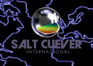 Salt Cuever Internacional (1999)