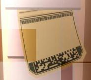 Secret time card