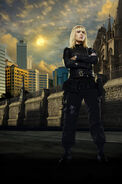 Sanctuary IMDb Poster Ashley Magnus