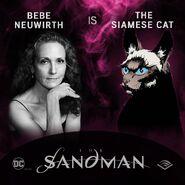 The Sandman Audible Bebe Neuwirth Siamese Cat