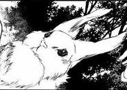 Ragout rabbit en el manga