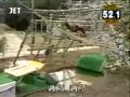 Jump Hang SASUKE 8