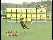 Kick Target Fall 1998
