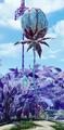 Huge flower bud.png