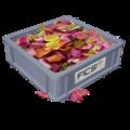 Цветочные лепестки.png