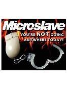 Microslave