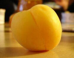 Apricot fruit1.jpg