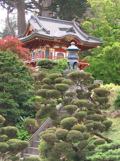 SF Japanese garden11.JPG