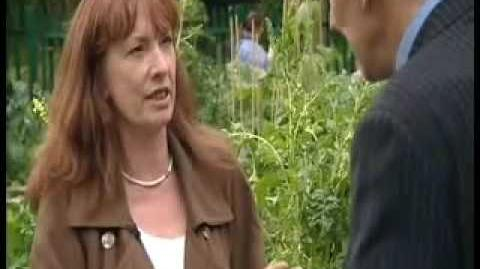 Incredible Edible Todmorden - News at 10