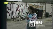 Rosa Vorspann S24