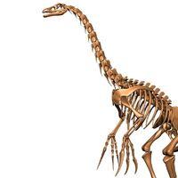 """Therizinosaurus (""""Reap lizard"""")"""