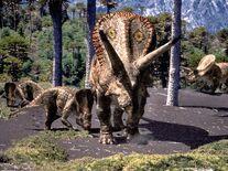 Torosaurus and juvenille