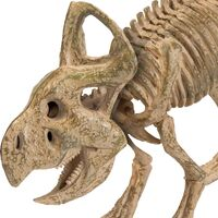 """Protoceratops (""""First Horned Face"""")"""