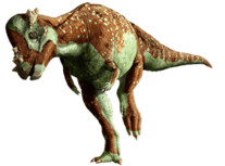 Pachycephalosaurus 01