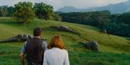 Desceded Apatosaurus Herd