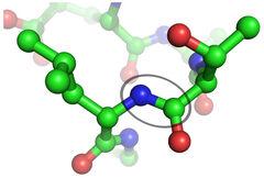 Peptide bond s leizinom i treoninom.jpg