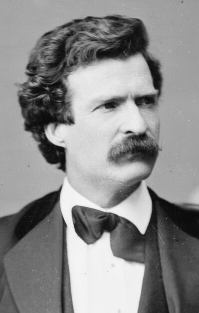 Mark Twain, Brady-Handy photo portrait, Feb 7, 1871, cropped.jpg