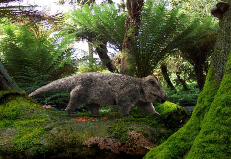 Лемурозавр