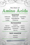Aminocids-Table-01-goog