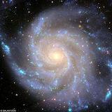 Galaxies-Zoo-goog.jpg