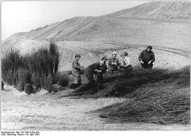 Bundesarchiv Bild 183-1987-0424-003, Spreetal, Tagebau, Rekultivierung.jpg