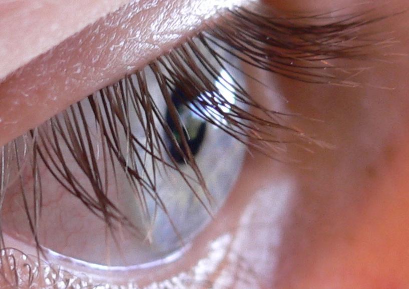 Ресницы глаза