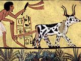 Γεωργική Επανάσταση